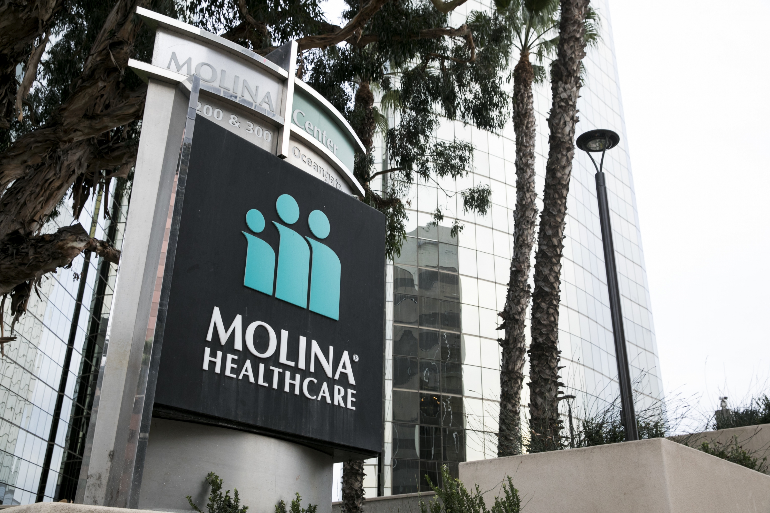 Molina Healthcare's purchase of Medicaid managed care provider ...