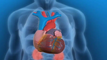 American Heart Association sets genetic testing guidelines for cardiovascular disease