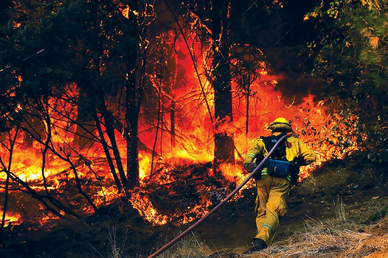 Firefighter walking towards forest fire.