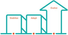 stabilize adapt evolve graphic vizient
