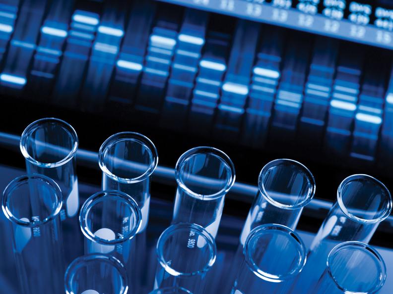 Testing DNA